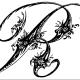 black.dragon90000