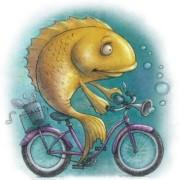 brainfish