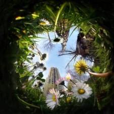 Avatar for christopherreay from gravatar.com