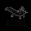 AjoloteNegro MX