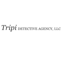 tripidetectiveagency's picture