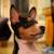 manaflask profile image