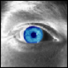 View NeoStormer's Profile