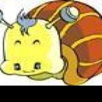 会飞的蜗牛