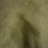 FP's icon