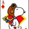 Snoopy66