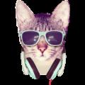 Portrait de blu3sky