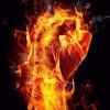 firefist235