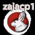 zajacp1 - zdjęcie