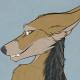 Dark_Technician's avatar