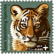 DevOps Tiger