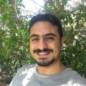 Naguib Ihab