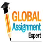 Global Assignment Expert