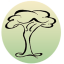 Grace Sequoia