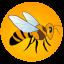 Ana Arı Gen