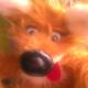 Max Filippov's avatar