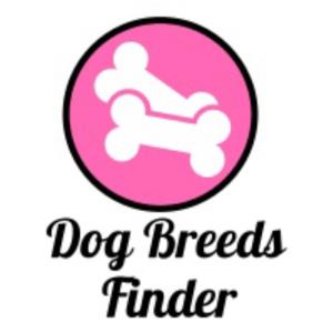 Dog Breeds Finder Team