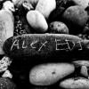 Alex EDI avatar