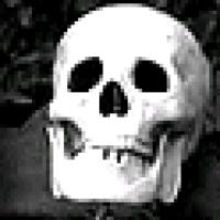 TheLostSkeleton