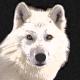 Profile photo of whitewolf1988