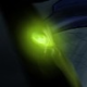 Ravijioli's avatar