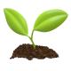 Profile picture of organicjar