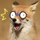 rahkitty's avatar