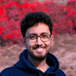 Saeid Akbari