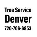 Avatar of treeservicedenver