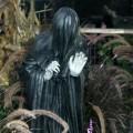 Avatar for Rachel @ Dog Island Farm