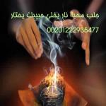 الشيخ محمد البحيري
