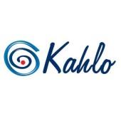 Kahlo Websites