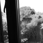 Isola dei famosi: Simona Ventura e la sfida dell'ultima spiaggia