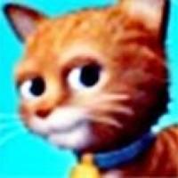 cat5977