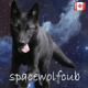 spacewolfcub's avatar