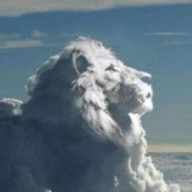 Lion79