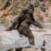 Cryptosasquatch's avatar