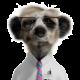 Thomas Mäder's avatar
