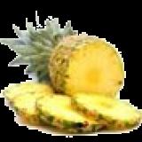 catamandoo