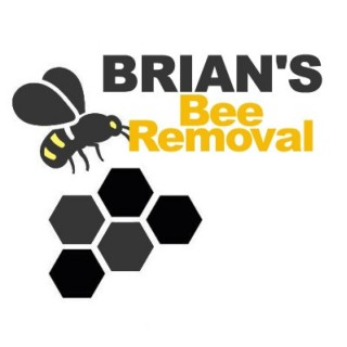 Brians Bee Removal