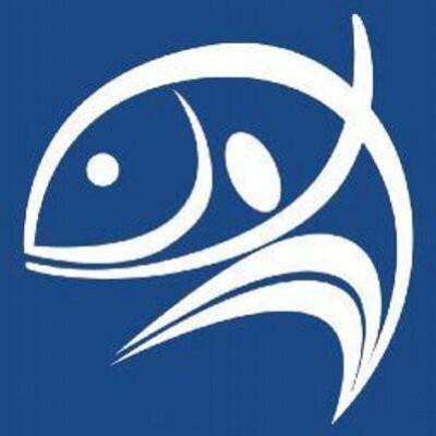 Photo of World Fish