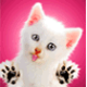 Janxyu's avatar