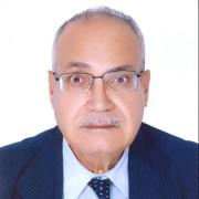 صورة حسن حنفي