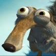 squirrelef9