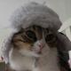 skiphs's avatar