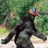 bigfoot49211[I need help with IPOD 5.0.1!!!]