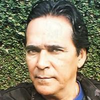 Resultado de imagem para Dino Barsa