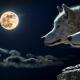 Бели вук
