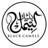 blackcamels