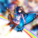 MsrButterfly